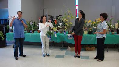 Photo: Bầu chọn cây lan đẹp trong tháng.