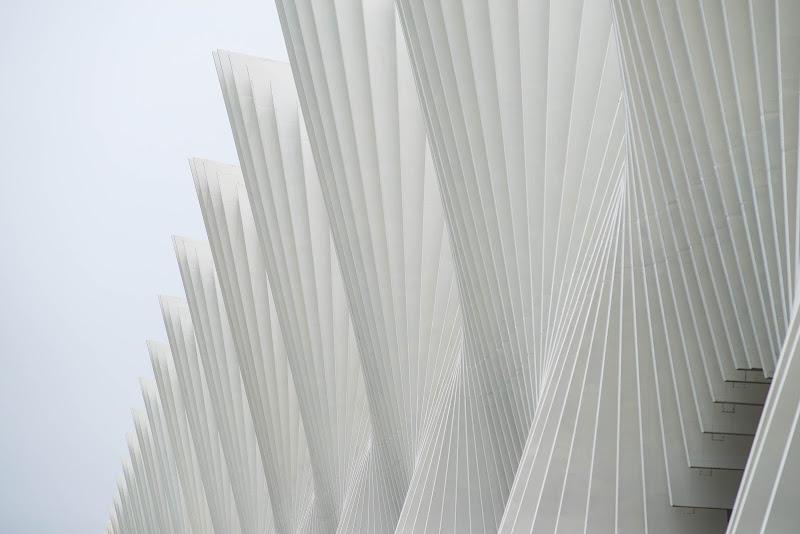 Sfumature di bianco di sarre 49