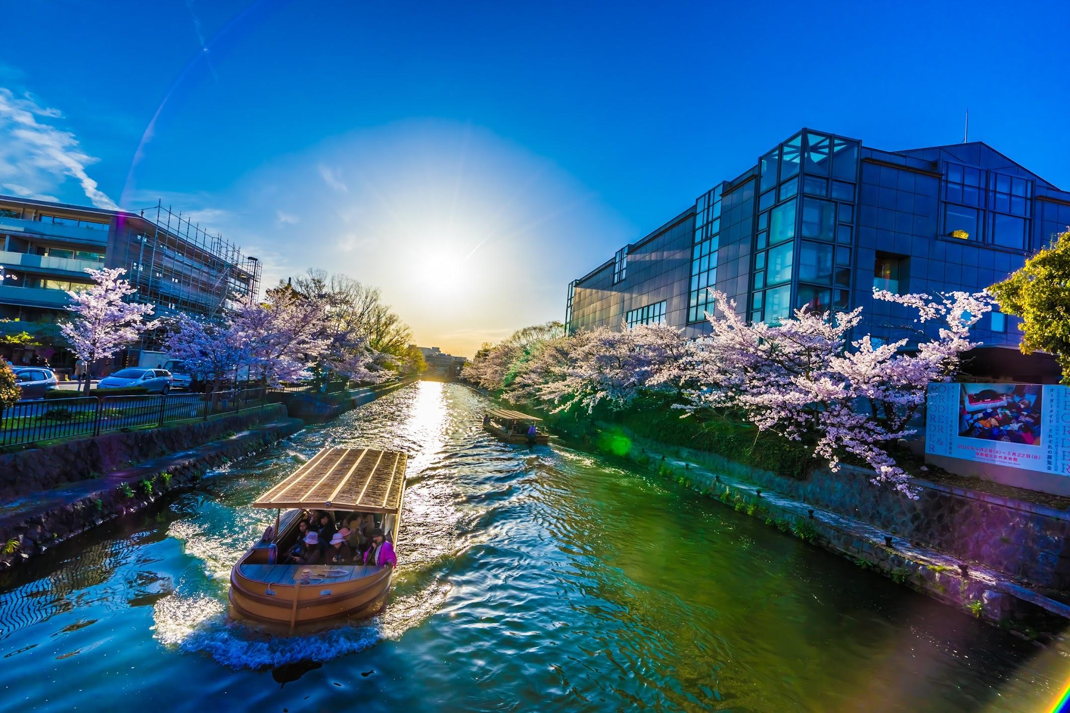 Kyoto okazaki canal cherry blossoms3