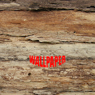 Wood Pattern Wallpapers icon
