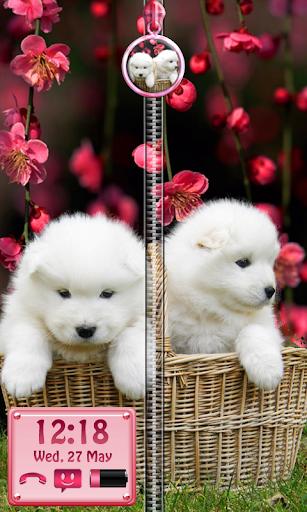 かわいい子犬のロック - ジッパー