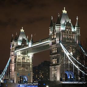 Tower Bridge by Geir Hammer - Travel Locations Landmarks ( water, england, tower, london, bridge )
