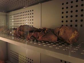 Photo: Momia guanche Museo etnográfico de Canarias