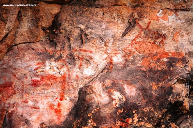 Cervídeo Malhado Sitio Arqueológico Chapadinha 1 Pirai do sul Paraná, Brasil.