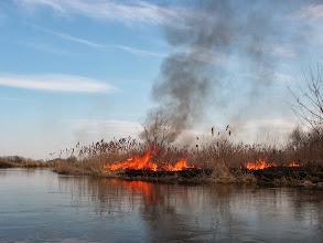 Photo: debilne wypalanie traw trwa :(
