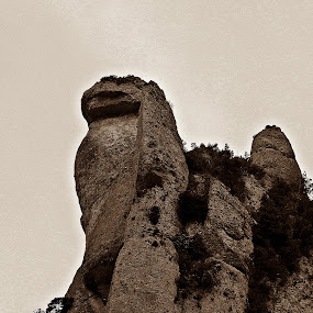 Lion King by Vivek Suryanarayana - Landscapes Caves & Formations