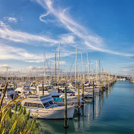 Yacht Harbour, Auckland by Graeme Hunter - Transportation Boats