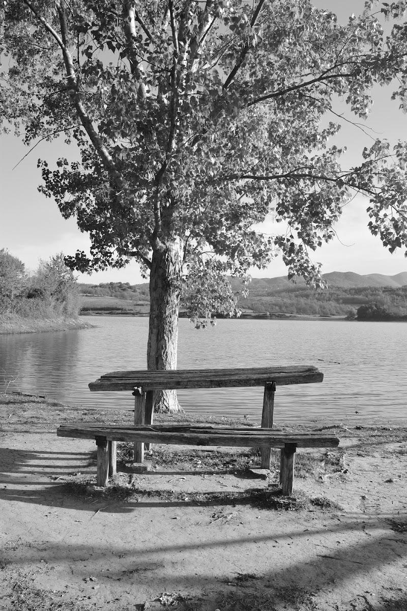 in riva al lago di irina sirbu