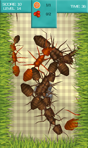 Dining Ants