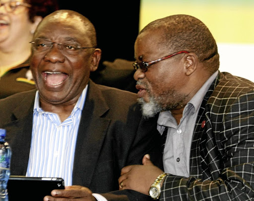 Comrades: Cyril Ramaphosa and Gwede Mantashe. Picture: THE HERALD