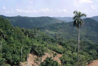 Photo: Vista de la Sierra de los Órganos (Cuba)