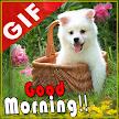 Good Morning GIF APK
