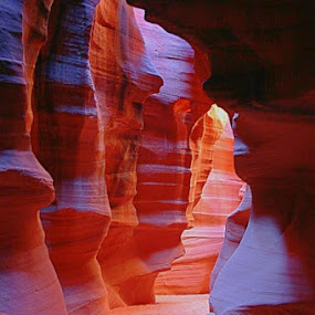 Desert Waves by Blaine Cox - Landscapes Caves & Formations ( utah, southern utah )