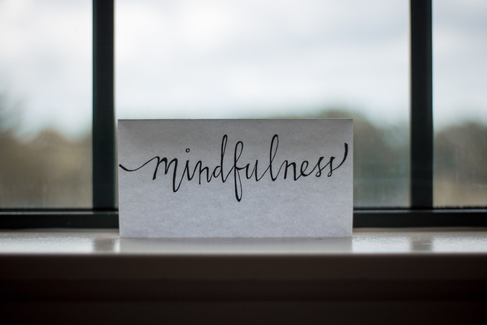 Mindfulness courses (A guide)