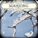 Hidden Mahjong: Frozen icon