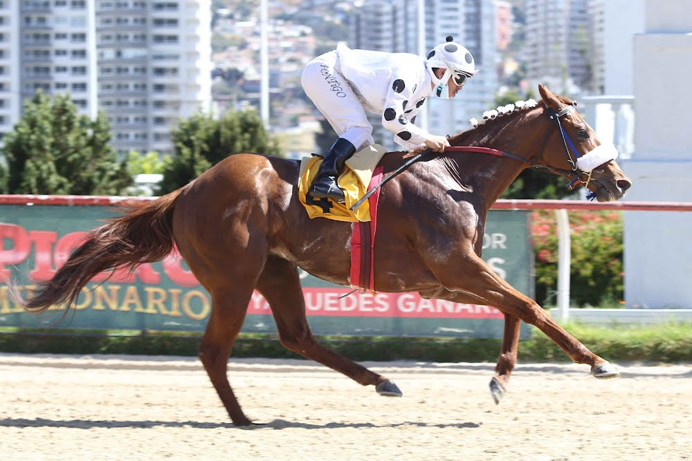 Del Fuego (Daddy Long Legs) se impuso en Handicap (1200m-Arena-VSC).