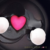 Diggin' Your Love