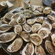 12 Oyster