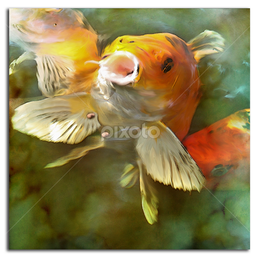 KOI by Zsuzsanna Szugyi - Digital Art Animals ( water, painted fish, fish, koi )