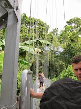 Photo: Arenal hanging bridges