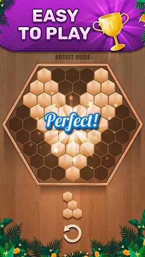 Wooden 100 Block Puzzle: Wood Hexa Star Gem apktram screenshots 4