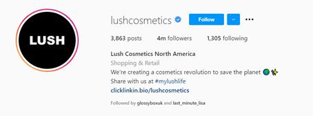 industry name included in instagram handle