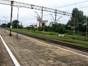 Photo: Ścinawa