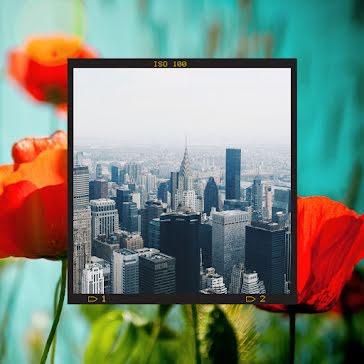 Poppy Skyline - Instagram Post template