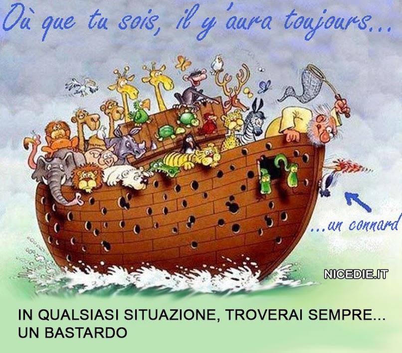didascalia: in qualsiasi situazione troverai sempre un bastardo. l'arca di Noè è crivellata di buchi, è stato il picchio: