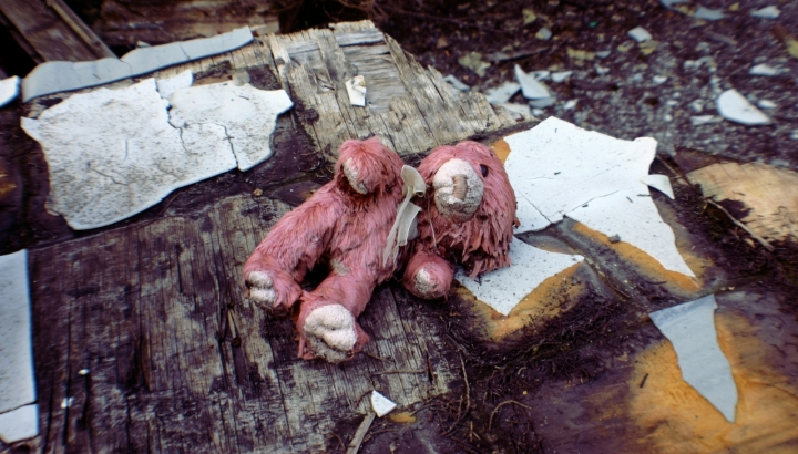 "Teddy bear di michele""cib""biscaro"