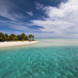 Paradise by Martin Behrens - Landscapes Beaches ( south pacific, diving, dream, island, snorkel, cook islands, holiday, water, lagoon, honeymoon, palm trees )