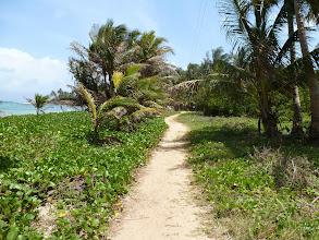 Photo: the island highway