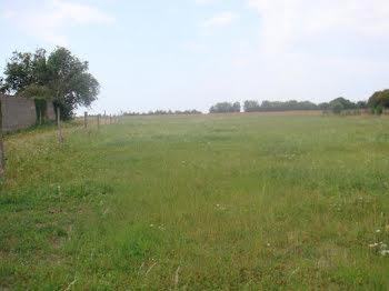 terrain à Bussy (18)