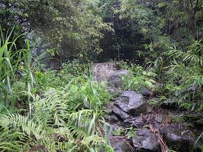 Photo: 下溪點