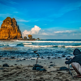 by Surya Forty-Six - Landscapes Beaches