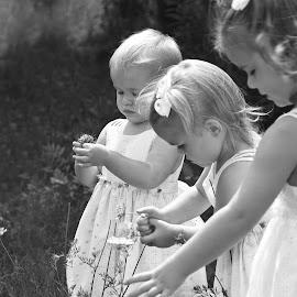 Three sisters by Paul Drajem - Babies & Children Children Candids ( outdoor portrait, outdoors, outside, portrait photographers, kids portrait, girls, family,  )
