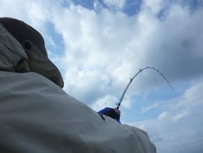 """Photo: 好調の""""アダチさん""""! 今度の魚は、お・も・た・い。"""