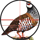 Partridge sound v 2.1 app icon