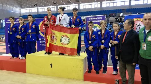 El Club Hosinsul de Taekwondo consigue grandes resultados
