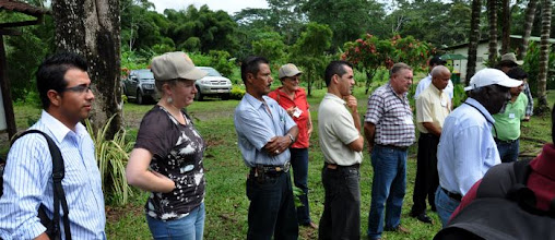 Photo: Participants listening to Oscar Montero's experiences in SRI plot establishment techniques