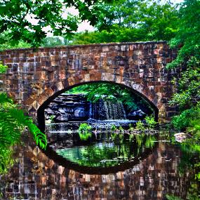 Bridge by Patrick Marsh - Landscapes Waterscapes ( water, old, rock bridge, trees, bridge )