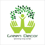 Order Plants Online to Decorate Your Home in A Natural Way