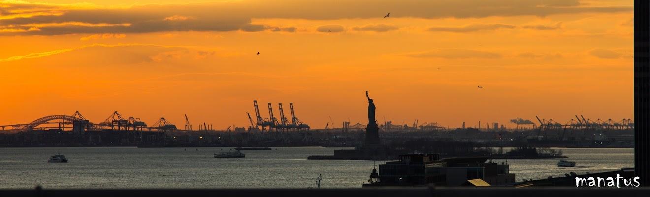la estutua de la libertad desde el puente de brooklyn