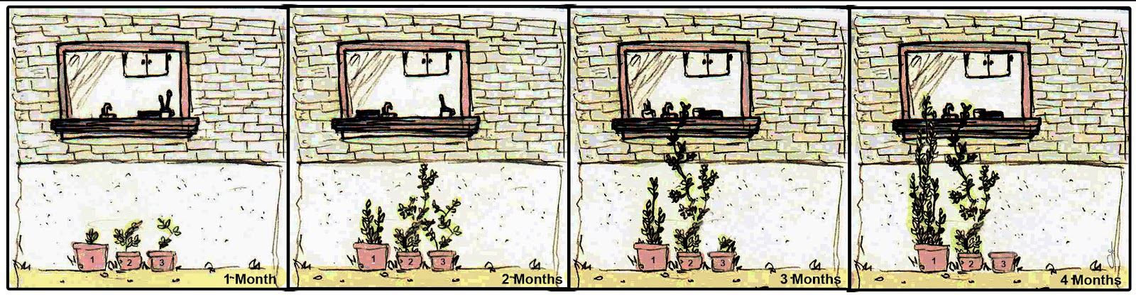 window 3 months 4 box with month.jpg