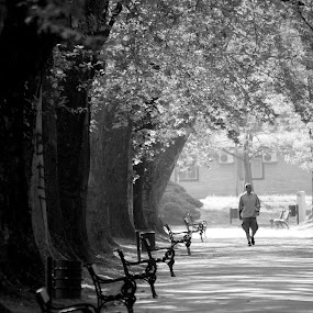 One by Emil Chuchkov - City,  Street & Park  City Parks ( cuckove canon b&w park skopje landscape )