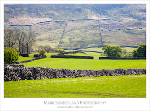 Photo: Dry Stone Walls and Meadows near Burnsall  I had a good day out shooting in and around the Yorkshire Dales earlier this week, mainly concentrating on towns and villages (Skipton, Grassington and Burnsall) but I managed to stop for a few landscapes in between. The meadows are looking very lush and these caught my eye backlit by the afternoon sun near Burnsall.  Canon EOS 5D, EF24-105mm f/4L IS USM at 105mm, ISO 200, 1/80s at f16