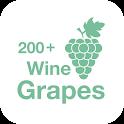 200+ Wine Grapes icon
