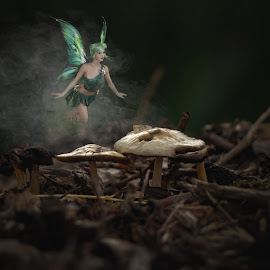 A childrens world by Clayton Warby - Digital Art Places ( magical, fantasy, woodland, toadstool, fairy )