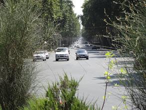 Photo: Pro Dušanbe (do 60. let známé jako Stalinabad) jsou typické široké ulice a hodně zeleně. Na fotce je hlavní třída - Prospekt Rudaki, která prochází městem od jihu k severu.