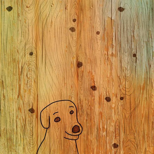 Solução: aqui está a imagem do cachorro na floresta desse desafio viral.  (Fotos: Facebook)